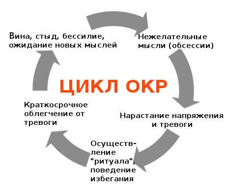 Цикл ОКР.