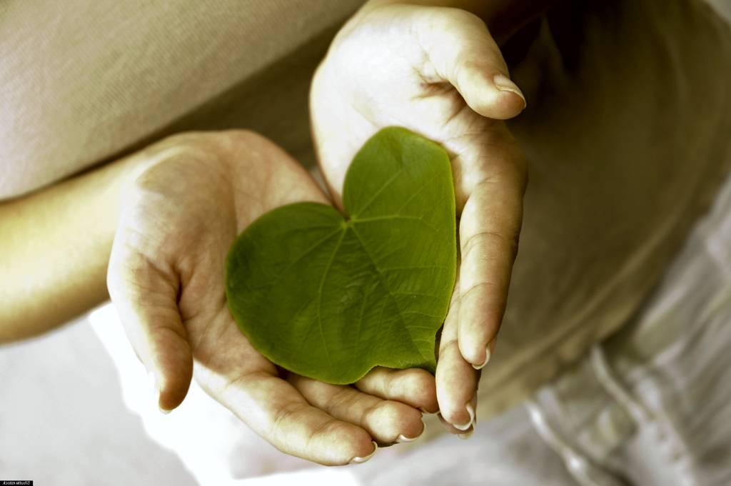 здоровое сердце: никакой тахикардии и ВСД