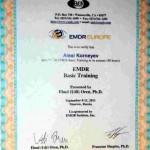Сертификаты по EMDR (обучение у Уди Орена)
